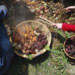 Root Vegetables in a Cedar Bowl